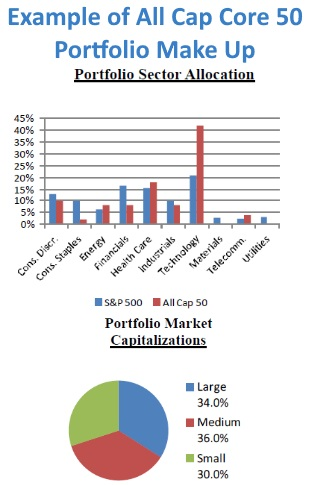 Graph Showing Portfolio Sector Allocation and Chart Showing Capitalizations