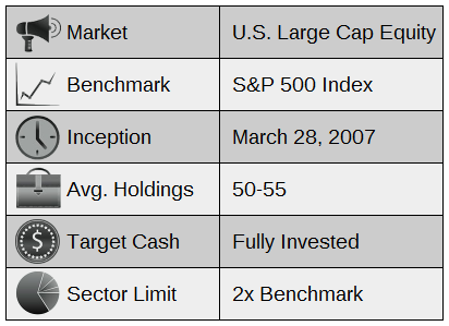 Overview of Large Cap Growth Portfolio